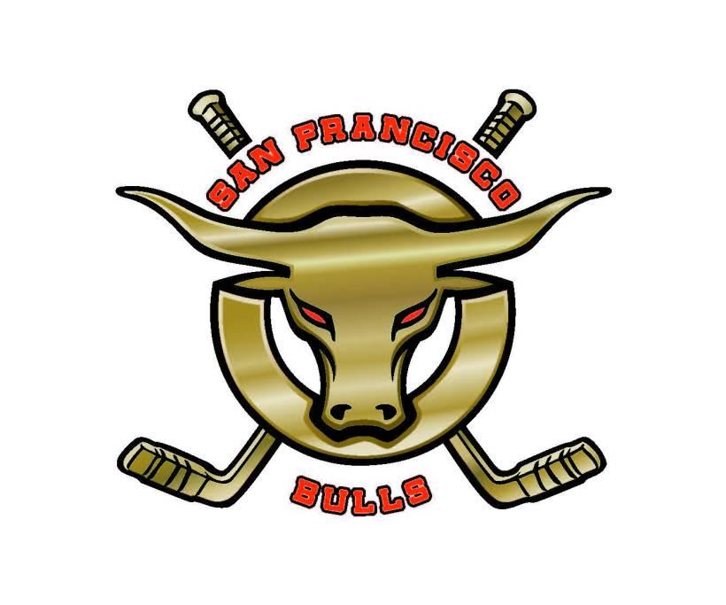 Bulls-Logo1